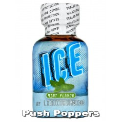 Big ICE MINT Flavor - TOP cena ČR